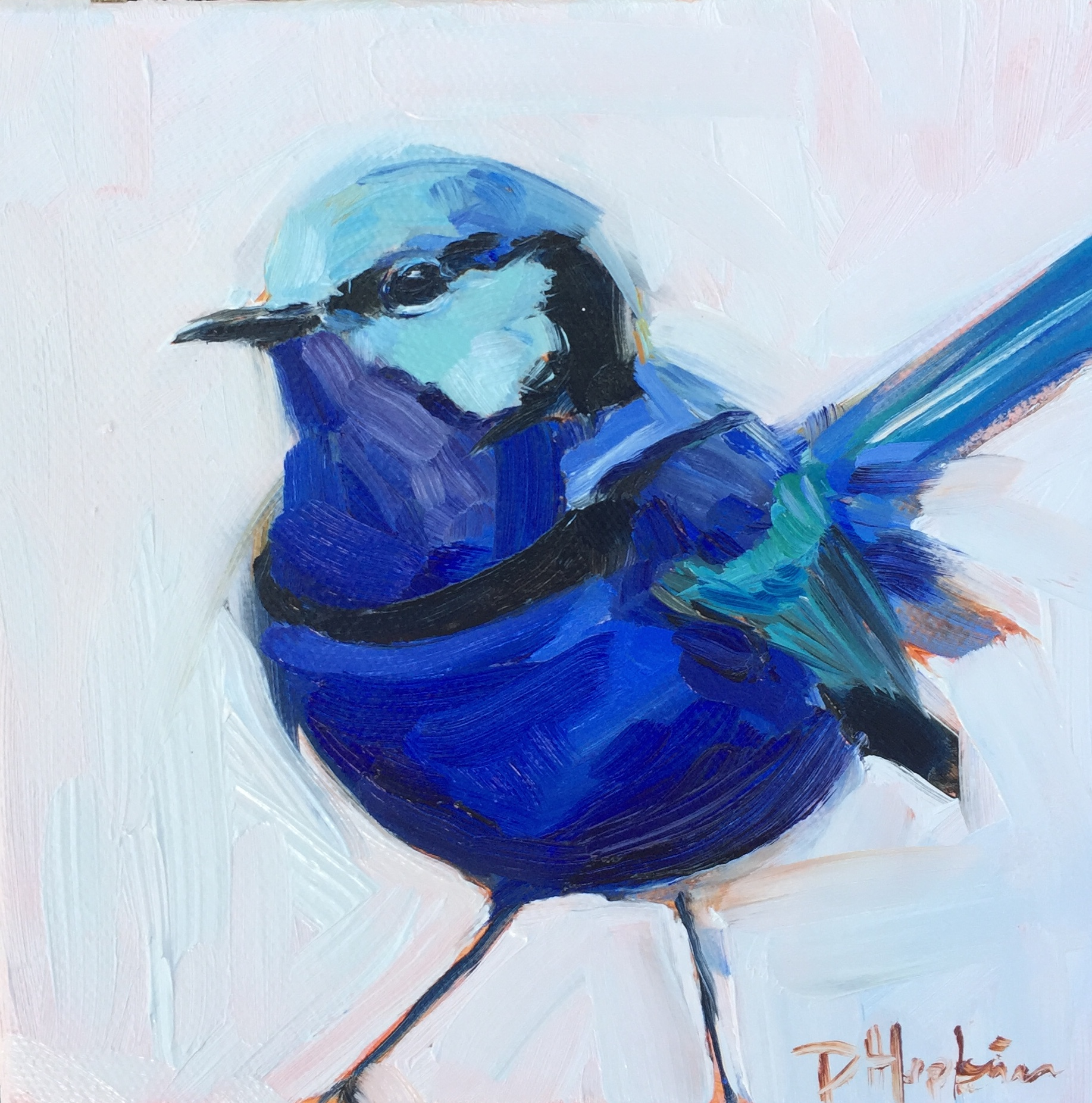 Fairywren painting by artist Denise Hopkins
